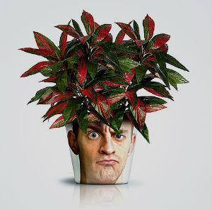 neobichnie cvetochnie gorshki 26