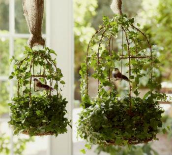 kletki dly ptic v interere 12
