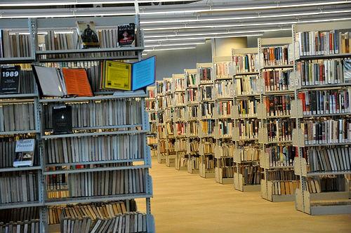 neobicnay-biblioteka-21