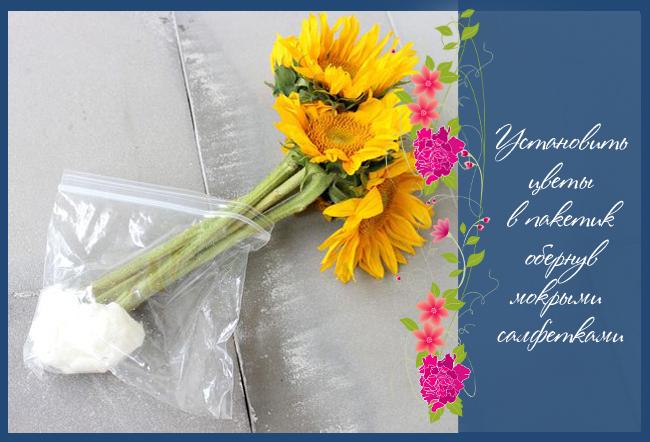 Как сделать вазу из старого зонта за 10 минут (два варианта оформления)