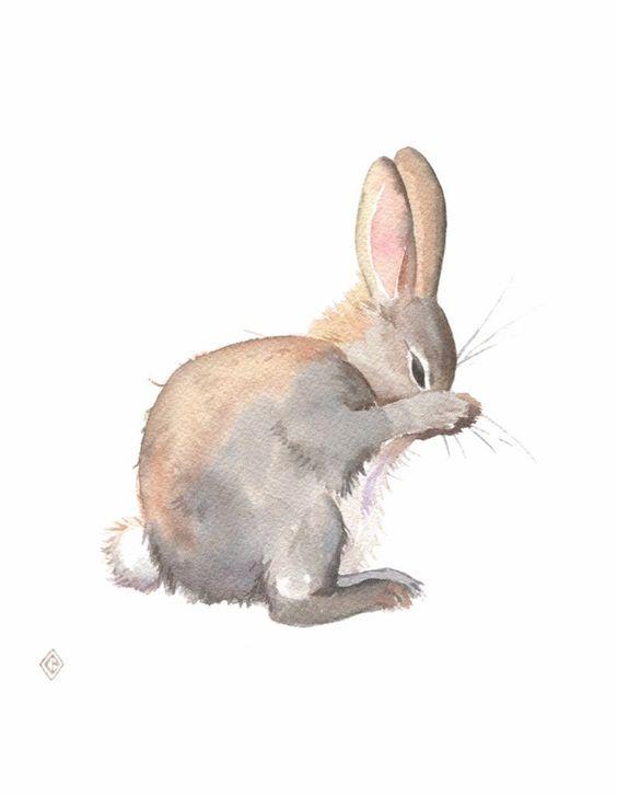 Пасхальный кролик - картинки (подборка нарисованных зайчиков)